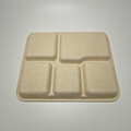 5 Compartment Biodegradable Bagasse