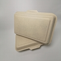 1000ML 2 compartment Eco food packaging biodegradable clamshell box 1