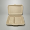 1000ML 2 compartment Eco food packaging biodegradable clamshell box 2