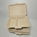 1000ML 2 compartment Eco food packaging biodegradable clamshell box 3