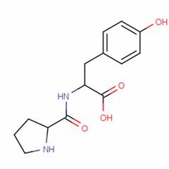 RGD多肽
