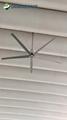 china fan factory big industrial air ceiling fan industrial wall electric fan  2