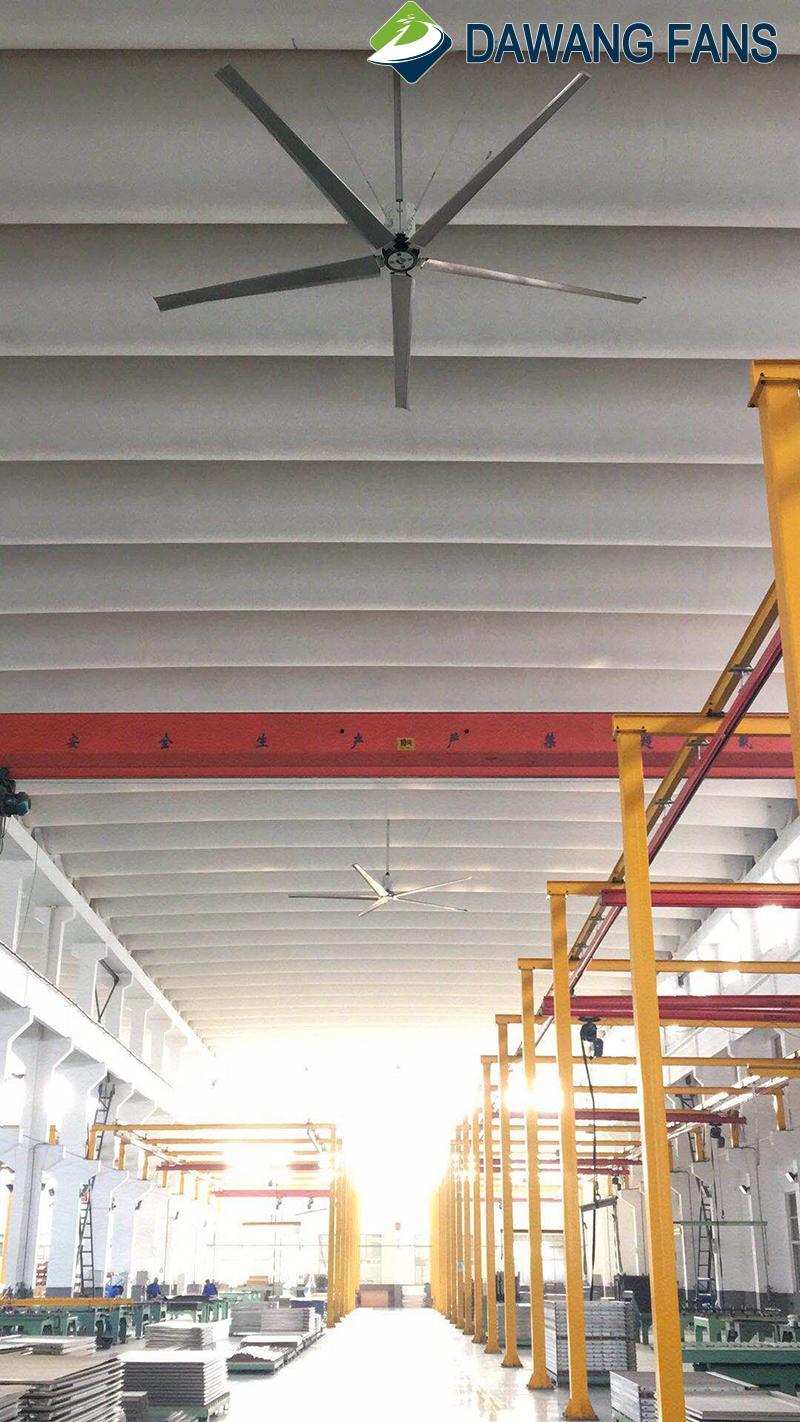 china fan factory big industrial air ceiling fan industrial wall electric fan  5
