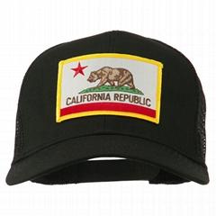 California State Flag Ha