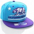 Flat brim snapback hat bear embroidery