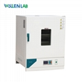 Hot Sale Desktop Laboratory Equipment Hot Air Circulating Blast Drying Oven