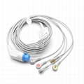 One-piece ECG Cable with 5 leads Snap AHA Compatible Datex