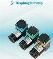 Diaphragm liquid/air pump for clinical diagnosis instrument