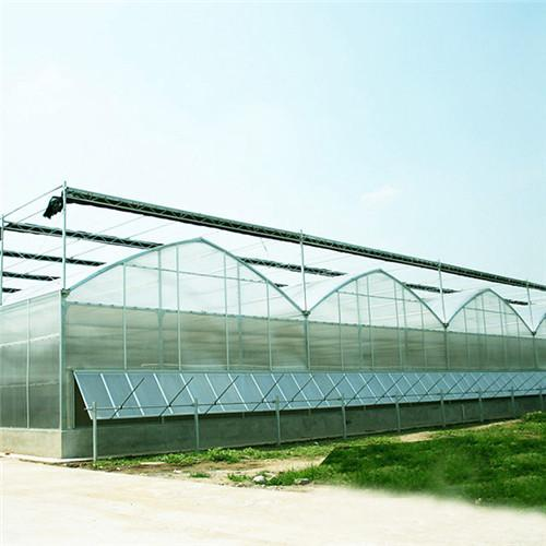Polycarbonate greenhouse roofing sheets 1