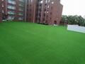 美创休闲景观用人造草坪