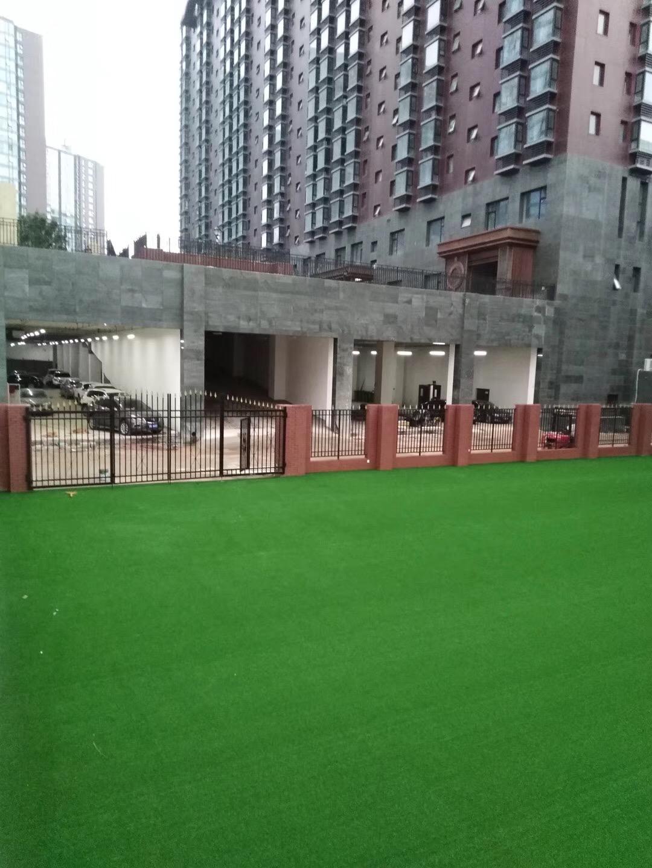 美创休闲景观用人造草坪 2