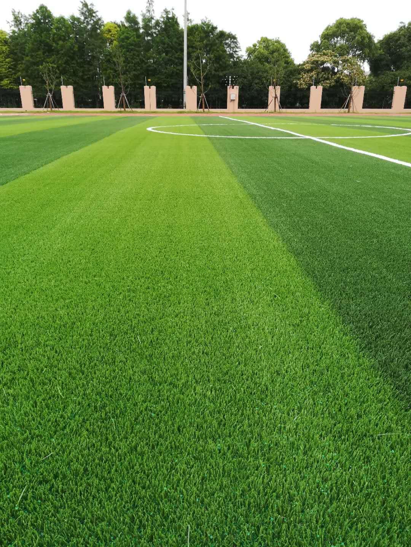 美创TS型填充型人造草坪 1
