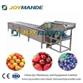 Industrial Vegetable And Fruit Air Bubble Washing Machine Air Bubble Washer 1