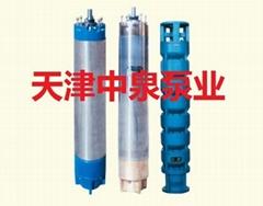 天津海水潛水泵
