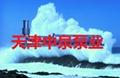 天津低吸潜水泵