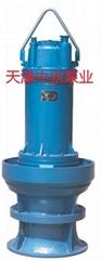 天津潜水轴流泵