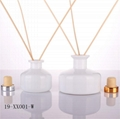 frosted reed diffuser bottle