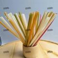 Biodegradable Edible Ecoware Rice Tapioca Drinking Straw Making machine
