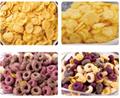 Breakfast Cereals Manufacture Machine