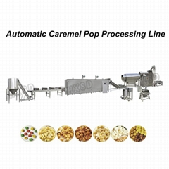 New Condition Full Automatic Popcorn Processing Line