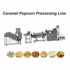 CE Standard Full Automatic Popcorn Processing Line