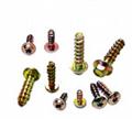 Customize screws as per sample or