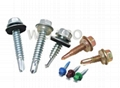 Hexagon head self drilling screw with