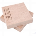 waterproof plywood for boat