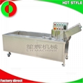 Shenghui factory vegetable and fruit bubble washing machine for sale 1