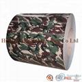 TIGA Factory supply PPGI - Prepainted Galvanized Steel Coils