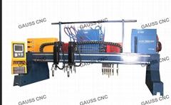 4x14m Gantry CNC Plasma Flame Metal Cutting Machine cutter (3000 x 12000mm)