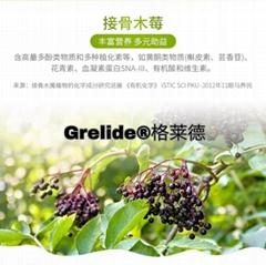 德国进口接骨木莓粉6.5%