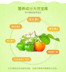 针叶樱桃粉17%Vc