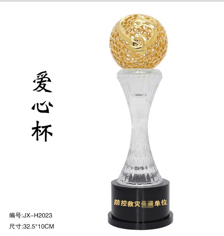 武汉抗疫标兵定制荣誉奖杯 表彰留念水晶奖牌 2