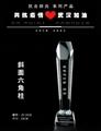 武汉抗疫标兵定制荣誉奖杯 表彰留念水晶奖牌 3