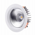 LED Downlight DTF Series  custom Color