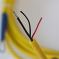 交聯聚乙烯高溫測溫電纜 測溫線糧倉測溫電纜 3