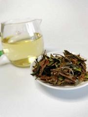 白茶中國供應商禮品出口商
