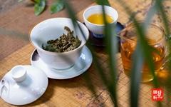 中國生茶廣西供應商茶葉出口