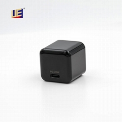 UE Electronic 20W Charge
