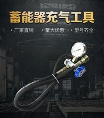 奉化迅捷液壓蓄能器充氮工具蓄能器膠囊隔膜式蓄能器活塞式蓄能器