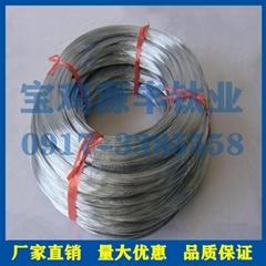 鈦絲 高純鈦線 鈦合金焊絲純鈦TA1鈦材純鈦絲