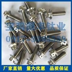 鈦標準件 TC4鈦螺絲 鈦緊固件 GR5標準件
