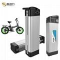 High Quality 36v 11.6ah Electric Bike