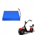 Customized Rechargeable OEM Lithium Battery Pack 48v 20ah for bicycle scooter
