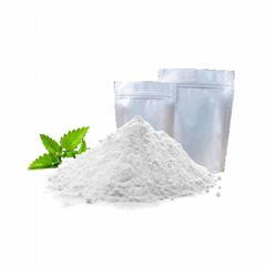 Chemicals Raw Materials HPMC Powder Tile Adhesive