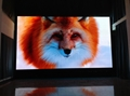 P1.2mm Indoor Small Pixel Pitch LED Display COB Technology LED Screen Wall TV Pa 2