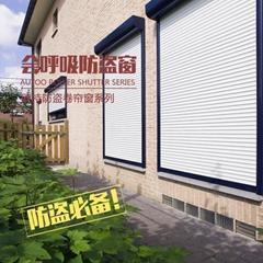 供应防盗高强度卷帘窗防风卷帘窗欧式铝合金卷闸窗遥控