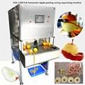 YDA-1200 Full Automatic Apple Peeling