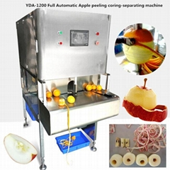 YDA-1200 Full Automatic Apple Peeling Coring-Separating Machine